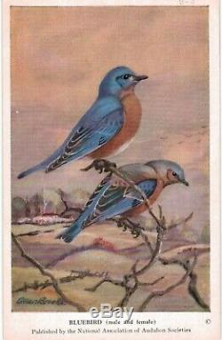 Audubon Bird Cards COMPLETE 150 Card Sets #1,2,3 MINT MINT