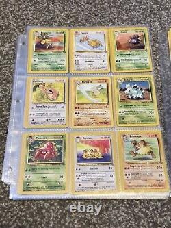 Complete Gem Mint Jungle Set 48/64 Pokemon Card Collection All Non Holos PSA 9+